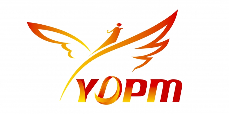 YDPM Yida Precision Machinery